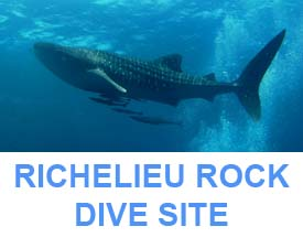 Similan Dive guide Richelieu rock dive map