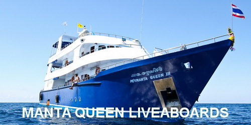 Manta Queen fleet liveaboard booking